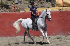 Cervantes_218