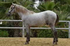 Gacho-Nadales_112