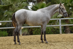 Gacho-Nadales_129