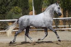 Gacho-Nadales_138