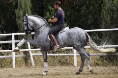 Gacho-Nadales_250
